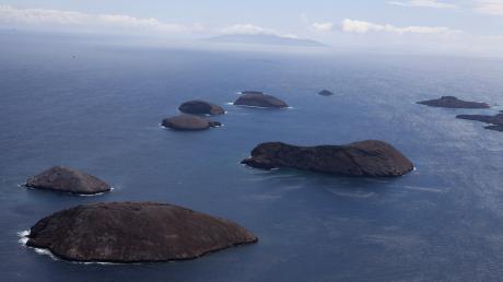 Die gut 1000 Kilometer vor der ecuadorianischen Küste liegenden Galapagosinseln sind vulkanischen Ursprungs und waren nie mit dem Festland verbunden. Sämtliche Tier- und Pflanzenarten stammen von Vorfahren ab, die übers Meer oder aus der Luft auf die Eilande kamen.