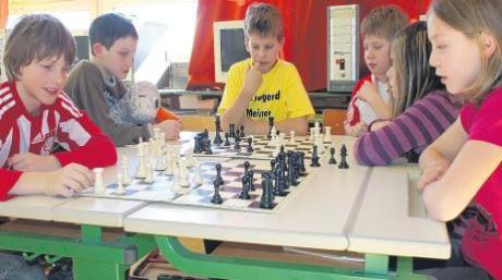 Eine ganz neue Welt entdeckt Paula Print bei der Schacharbeitsgruppe an der Inchenhofener Grundschule. Die sechs Viertklässler erklären ihr einige Regeln des Schachspiels und zeigen ihr, wie sich die Figuren auf dem Brett bewegen dürfen.
