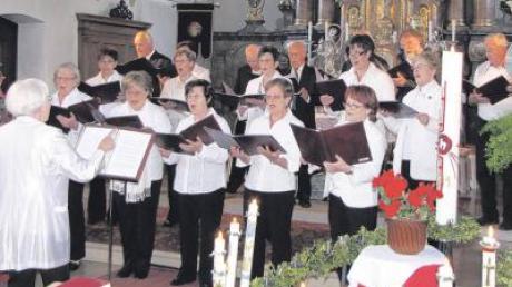 Die Singrunde bei ihrem Konzert in der Todtenweiser Kirche.