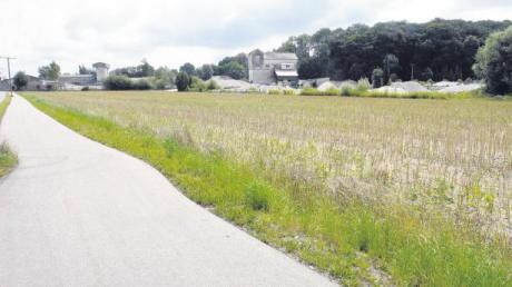 Der Raps ist abgeerntet. Hier will ein Landwirt eine Arbeits- und Lagerhalle errichten. Der Todtenweiser Gemeinderat machte mit der Aufstellung eines Bebauungsplanes den Weg frei.