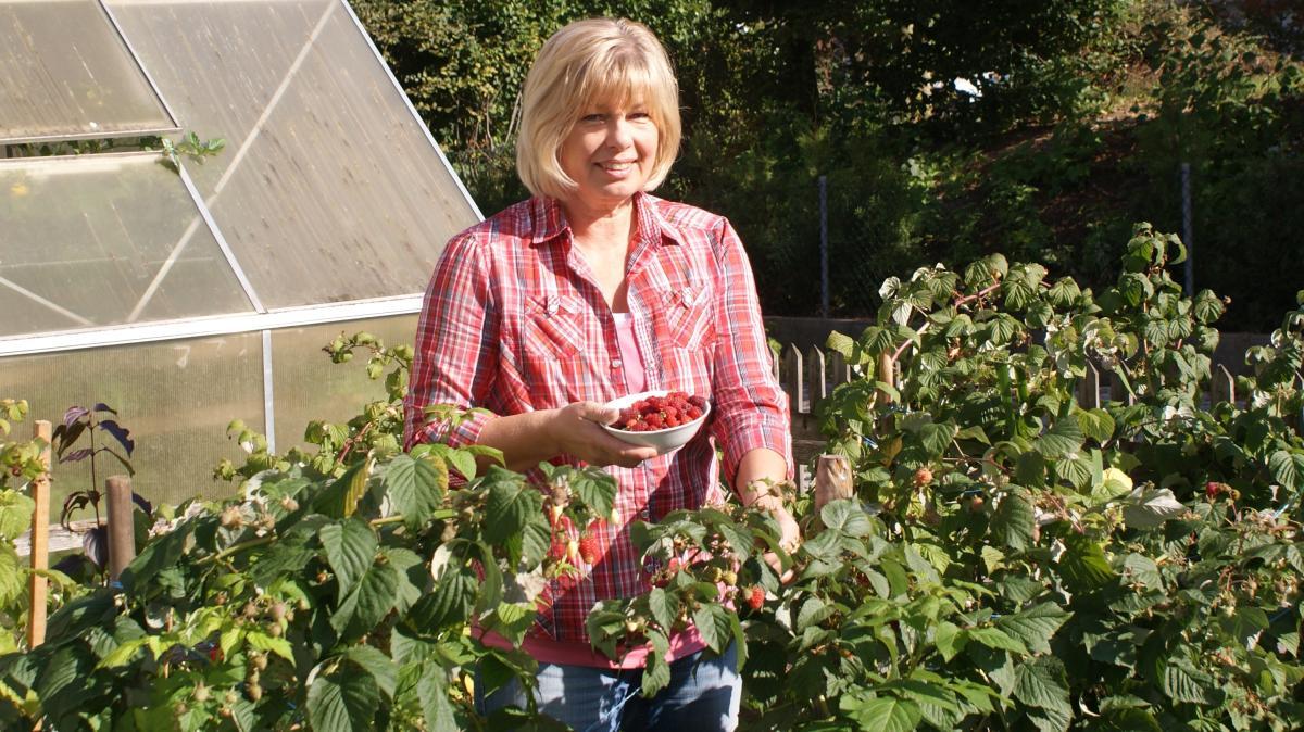 Gartenbau zu erntedank gibt es sauren datschi - Gartenbau augsburg ...
