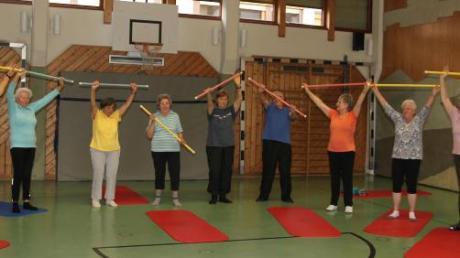 Wöchentlich bietet die Rheumaliga Gymnastikstunden an.