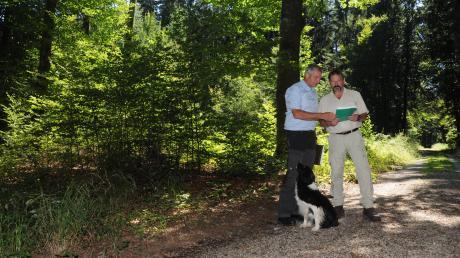 Dieser Wald bei Thierhaupten wird nachhaltig bewirtschaftet und ist zertifiziert. Was dahintersteckt, erklären (von links) Jürgen Kircher, Leiter der städtischen Forstverwaltung Augsburg, und Karl Stumpf, stellvertretender Leiter des Forstbetriebs Kaisheim, hier mit Hündin Maggie.