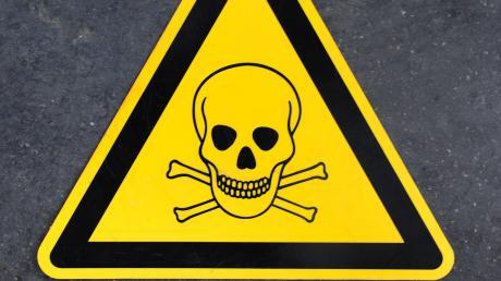 In Boos hat ein Unbekannter Giftköder auf das Grundstück einer Familie geworfen, die einen Jagdhund besitzt. (Symbol)