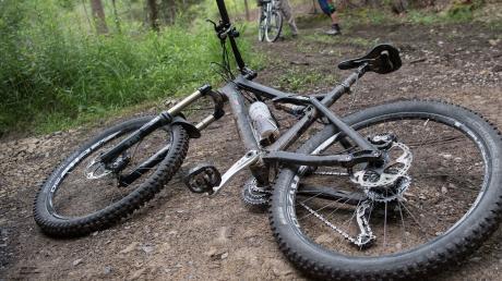 Eine illegale Mountainbike-Strecke haben Unbekannte in einem Wald bei Eichstätt angelegt.