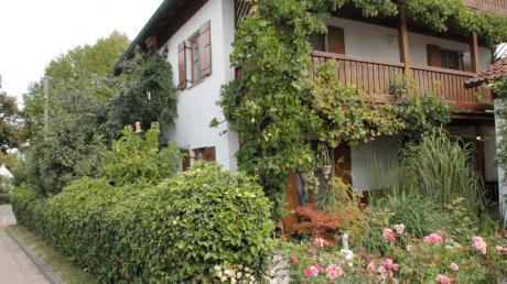 Bald beginnt die Weinlese für Manfred Biberthaler. Der Grimolzhausener hofft auf einen guten Jahrgang, denn er macht aus den weißen und roten Trauben seinen eigenen Wein. Die ranken am Haus und an den Balkonen hoch.