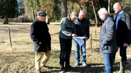 Zum Schutz der Besucher und Wanderer soll eine größere Baumfällaktion im Bereich der Wanderwege beim Taglilienfeld erfolgen.