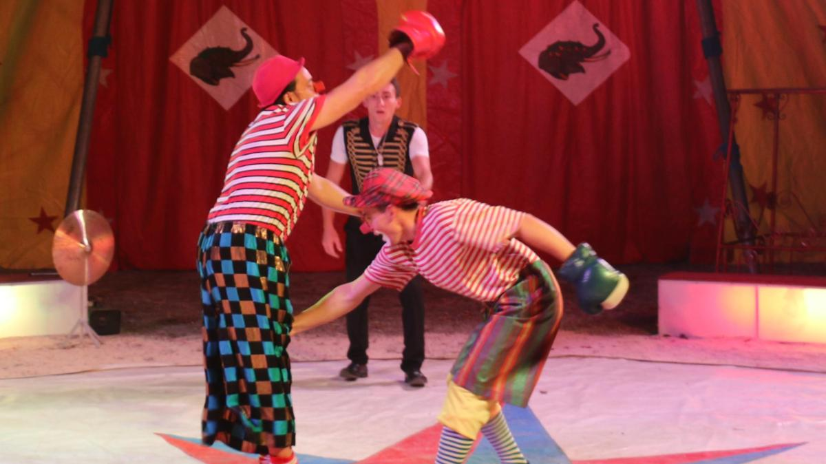 Zirkus Feraro