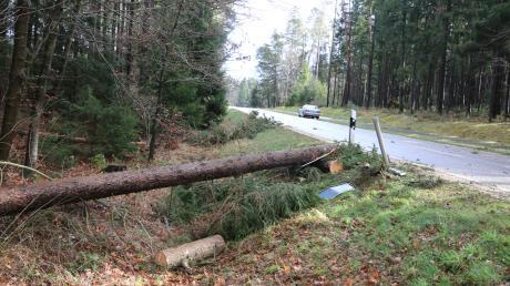 Zwischen dem Aichacher Stadtteil Untergriesbach und dem Schiltberger Ortsteil Allenberg stürzten Bäume auf die Straße. Nach wie vor warnen Förster davor, die Wälder zu betreten.