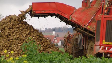 Der neue Maschinenring Wittelsbacher Land hat im vergangenen Jahr rund zehn Millionen Euro Umsatz gemacht, unter anderem bei der Zuckerrübenernte.