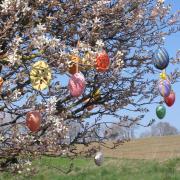 Der strahlend blaue Himmel an Ostern lässt die umhäkelten, mit Borten gestalteten oder in verschiedenen Farben bemalten Ostereier in einem besonderen Licht in der so harten Zeit erscheinen.