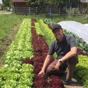 Gärtnermeister  Thomas Hutzler auf seinem Gemüsefeld.