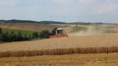 Unterwegs mit Landwirt Richard Herb: In diesen Tagen beginnt er bei Sielenbach mit der Weizenernte. Es ist ein trockener Job.