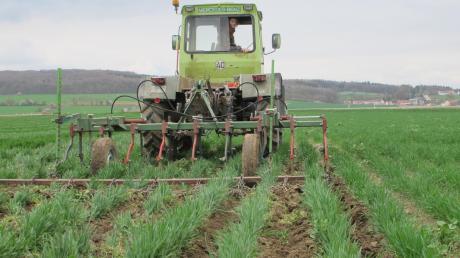 Um die Unterstützung der ökologischen Landwirtschaft geht es in der Öko-Modellregion Paartal.