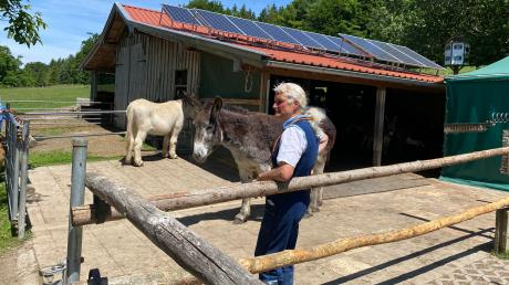 Der Schaf- und Eselstall von Anahid Klotz (Foto) und ihrem Mann Gerhard Gregori ist vom Gemeinderat im Nachhinein mit knapper Mehrheit genehmigt worden.