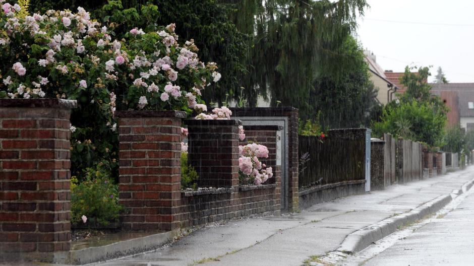 Diskussion: Wie hoch darf ein schöner Gartenzaun sein? - Nachrichten ...