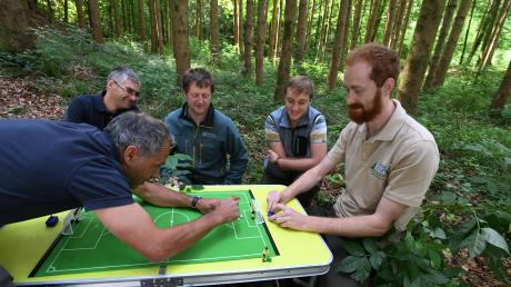 Fünf Förster spielen mitten Wald Tipp-Kick.