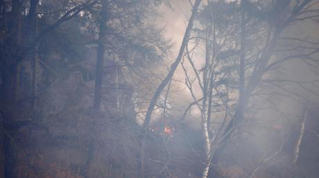 Warum die unberechtigt abgelagerten Gartenabfälle brannten, ist noch unklar.