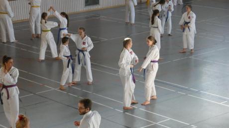 Gessertshausen_Taekwondo-1.JPG