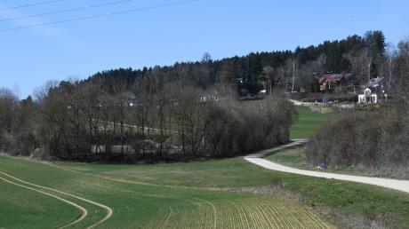 Das kleine Wiesenstück an der Bonstetter Kompostieranlage zwischen Acker und Weg gehört der Gemeinde. Bald könnte es hier bunt werden, denn die Kommune will ein umfangreiches Konzept erstellen, um ungenutzte Grundstücke für den Ausbau der Artenvielfalt zu nutzen.