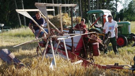 Vor einigen Wochen wurden von den Oldtimerfreunden Kutzenhausen auf einem Acker zahlreiche Garben gefertigt (Bild). Beim Oldtimertreffen in Buch werden die Bündel im Rahmen einer historischen Dreschaktion verarbeitet.