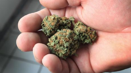 Bei der Durchsuchung der Wohnung des 22-Jährigen stellte die Polizei Marihuana sicher.