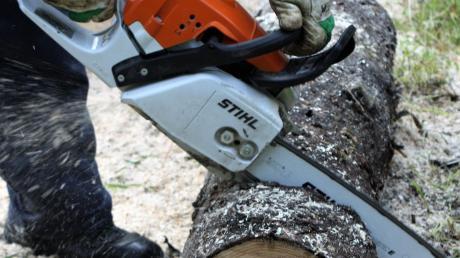 Ein 19-jähriger Arbeiter hatte sich nach ersten Informationen beim Entasten am liegenden Holz in das Bein gesägt