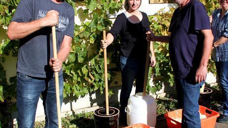 Mitglieder des Gartenbauvereins Herbertshofen und viele Besucher stampften bei herrlichem Spätsommerwetter Krautköpfe ein.