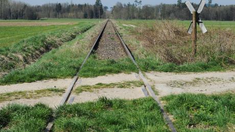 Gras wächst langsam, aber sicher über die Schienen: Sieht so die Zukunft der Staudenbahn aus? Quasi auf dem Abstellgleis? Dieses Szenario muss jetzt wieder befürchtet werden, weil die Reaktivierung der 1991 stillgelegten Strecke nicht wie geplant vorankommt, obwohl diese versprochen und beschlossen ist.