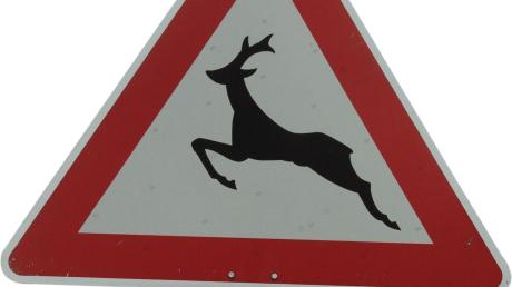 Vorsicht Wildwechsel sagen solche Schilder.