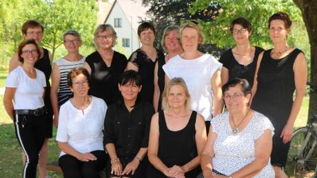 Die Besetzung des Abschiedschors in Ehingen wechselt ständig. Unser Bild zeigt ein mögliche Zusammensetzung.