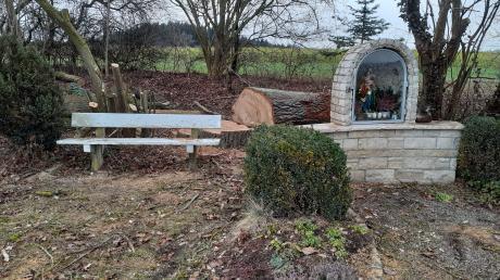 Eine alte Eiche im Dinkelscherber Ortsteil Anried wurde gefällt. Bei Bürgern hat diese Entscheidung zu Unmut geführt.