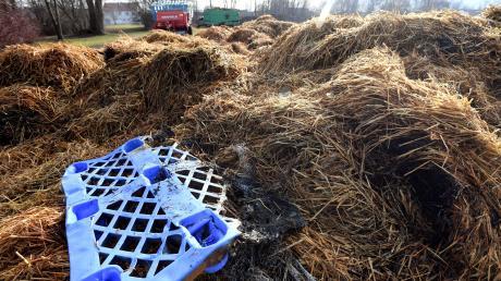 Ein Schaden in Höhe von 15000 Euro entstand beim Brand eines Strohballenlagers am Freitag in Nordendorf.