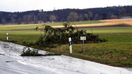 Auch zwischen Mödishofen und Häder lagen immer wieder dicke Äste und Zweige auf der Straße.