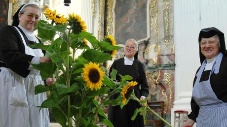 Fast 100 Jahre lang lebten und wirkten Schwestern der Sankt Josefskongregation in Holzen. Hier schmücken einige von ihnen die Klosterkirche. Nun wird der Konvent aufgelöst, die Franziskanerinnen kehren nach Ursberg zurück.