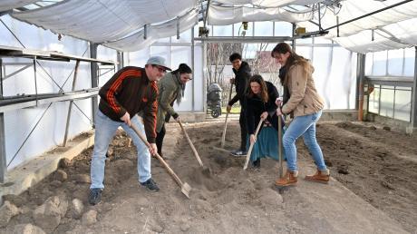 In Dinkelscherben soll eine solidarische Landwirtschaft entstehen (von links): Bernhard Streit, Sandra Sanislo, Oona Sporer, Ronja Thomas, Simone Gleich.