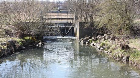 In der Schmutter tummeln sich viele Arten von Fischen. Doch für das Angeln gelten strenge Regeln. Das Bild zeigt ein Stauwehr bei Neusäß.