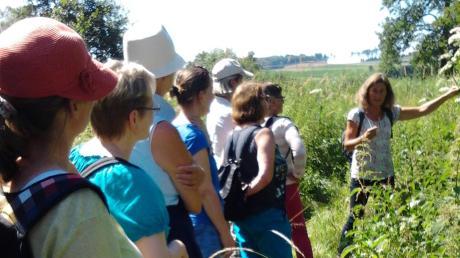 Bei Führungen, hier ein Bild aus dem vergangenen Jahr, zeigen Kräuterfrauen direkt an den Pflanzen, um was es sich handelt.