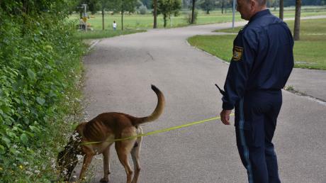 Auf der Suche nach dem Einbrecher setzte die Polizei auch einen Spürhund ein.