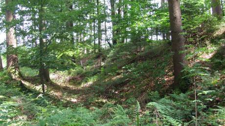 Bei der keltischen Viereckschanze Brennburg sind auch heute noch die Wälle und Gräben (rechts im Bild) gut erhalten und sichtbar.