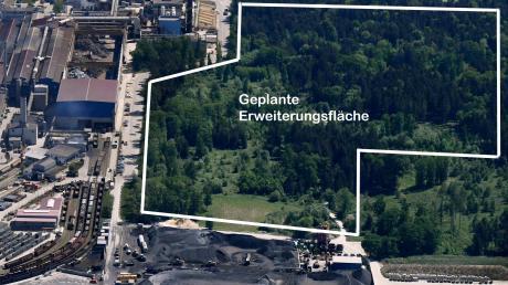 Auf dieser Fläche im Lohwald möchten die Lechstahlwerke in Meitingen ihren Betrieb ausweiten. Im Vordergrund der Schlackeberg.