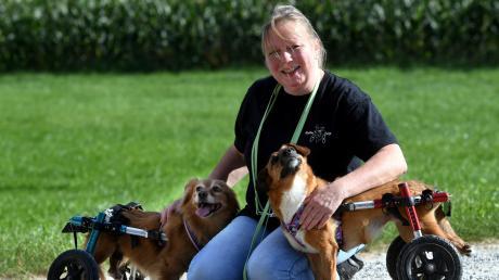 Jessica Scheller mit ihren beiden Hunden Susi und Lotta. Die beiden Tiere sind gelähmt. Durch ihre Rollis können die ehemaligen Straßenhunde nun wieder über die Wiese flitzen. Das hat Jessica Scheller zum Geschäftsmodell gemacht. Sie betreibt einen Online-Handel für Hunde-Rollstühle.
