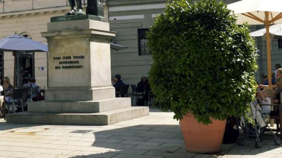 Augsburg: Mehr Blumen: Augsburg soll mediterranes Flair ...