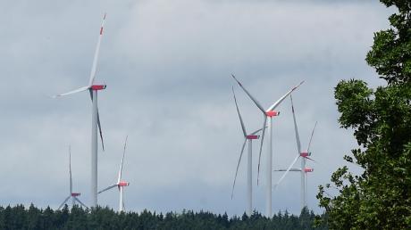 Ähnlich wie im Scheppacher Forst könnten auch im Wald bei Dinkelscherben Windräder entstehen. Noch steht das Millionenprojekt ganz am Anfang.