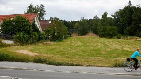 Der Streit dreht sich um diese 1,3 Hektar große Wiese am nördlichen Rand von Bergheim.