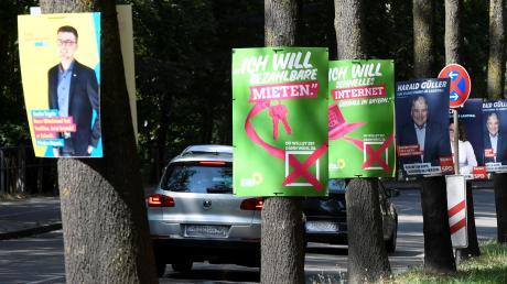 """Die großen Parteien haben bereits für die Landtagswahlen plakatiert. Unser Foto entstand an der Berliner Allee, wo jeder Baum zum """"Plakatständer"""" umfunktioniert wurde."""