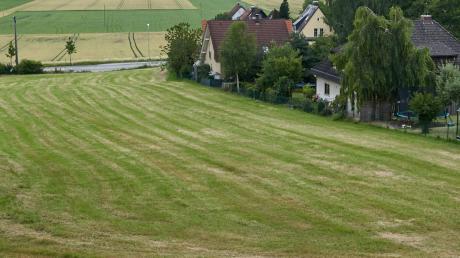 """Soll am Ortsrand vom Bergheim ein neues Baugebiet entstehen? Das Foto zeigt den Blick in Richtung Osten, unten ist die Straße """"Am Fuggerschloß""""."""