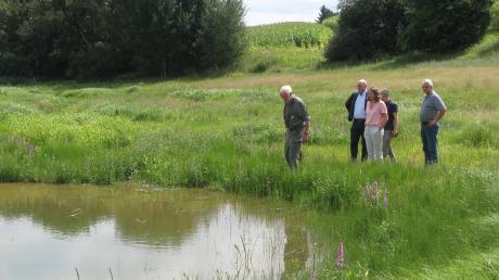 Bestens eingewachsene Biotope sorgen für neue Arten- und Lebensräume und biologische Vielfältigkeit im Herschbachtal.