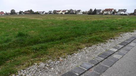 Auf diesen Äckern und Wiesen nahe der St.-Anton-Siedlung ganz im Osten von Lechhausen sollen rund 360 Wohnungen entstehen. Darunter werden - für Neubaugebiete in Augsburg inzwischen eine relative Seltenheit - auch um die 90 Einfamilienhäuser sein.