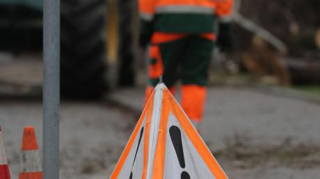 Grünamt gibt 40 neue Baumstandorte für Ersatzpflanzungen bekannt.